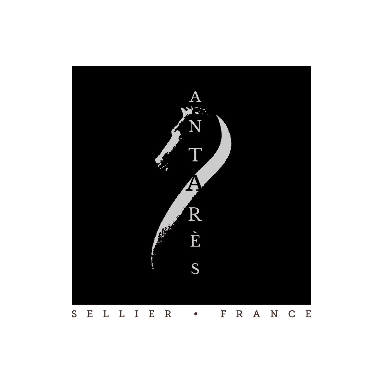 Antares - Casque et bombes