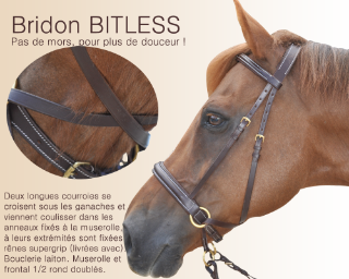 Bridons Bitless sans mors