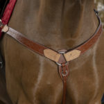 Collier de chasse WESTRIDE Two Tone