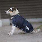 Couverture DIEGO & LOUNA 600D pour chien