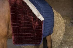 """Couverture d'écurie EQUITHÈME """"Teddy"""", doublée mouton synthétique"""