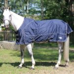 Chemise paddock Performance Abyss 600 D - Coton