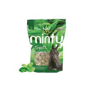 NAF-Minty Treats