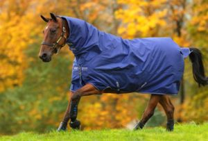 Couverture Amigo hero 900 all in one turnout 200g Horseware