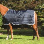 Couverture poney liner 100 g Horseware