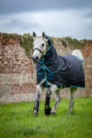 Couverture Amigo bravo poney plus medium Horseware