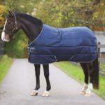 Couverture Amigo Insulator Med 200g Horseware