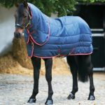 Couverture Amigo vari-layer plus heavy Horseware