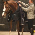 Couverture d'écuries Horseware liner 100g