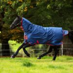 Couverture MIO Turnout lite all in one Horseware