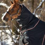 Couvre cou Rambo optimo 150g Horseware