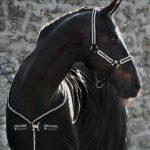 Licol Rambo diamante Horseware