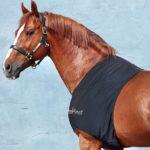 Protection d'épaules Rambo Horseware