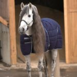 Couverture Rambo stable rug 200g Horseware