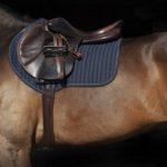 Tapis Horseware sport
