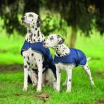Couverture de pluie pour chien