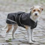 Couverture pour chien Protection