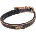 Collier chien Amigo
