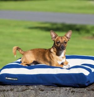 Coussin Rambo deluxe dog