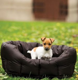 Coussin pour chiens Rambo dog