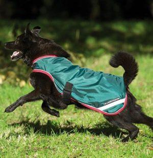 Couverture pour chien imperméable Rambo dog 100g