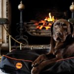 Panier pour chiens Rambo Ionic dog